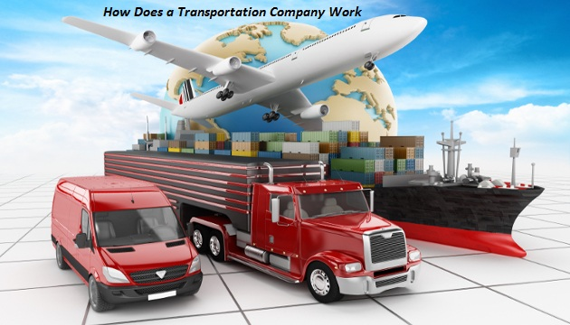 what does a transport logistics company do buhle betfu transport
